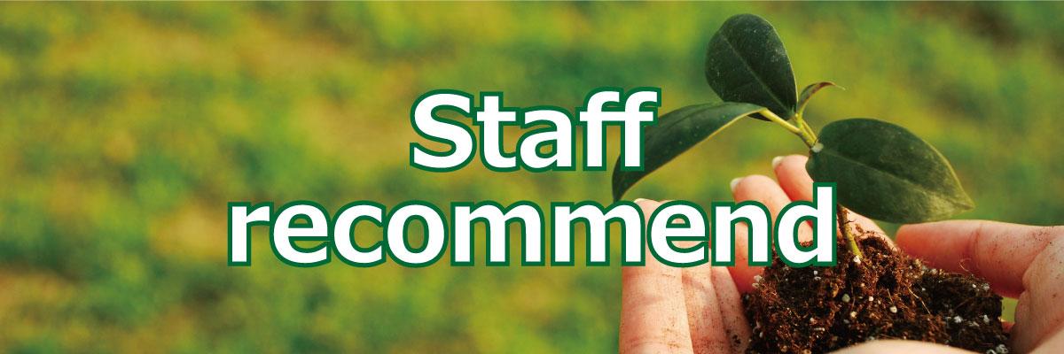 staffrecommend.jpg